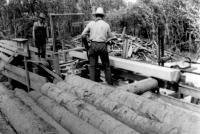 Antonio Desnoyers  prépare des «logs»