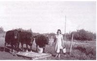 Eva Chalifour avec ses vache à lait