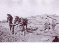 Gédéon Chalifour construisant leur première maison à Léoville