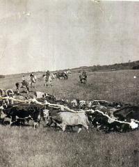 Le ranch d?Ernest Béliveau