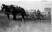 Pierre Gareau avec ses chevaux